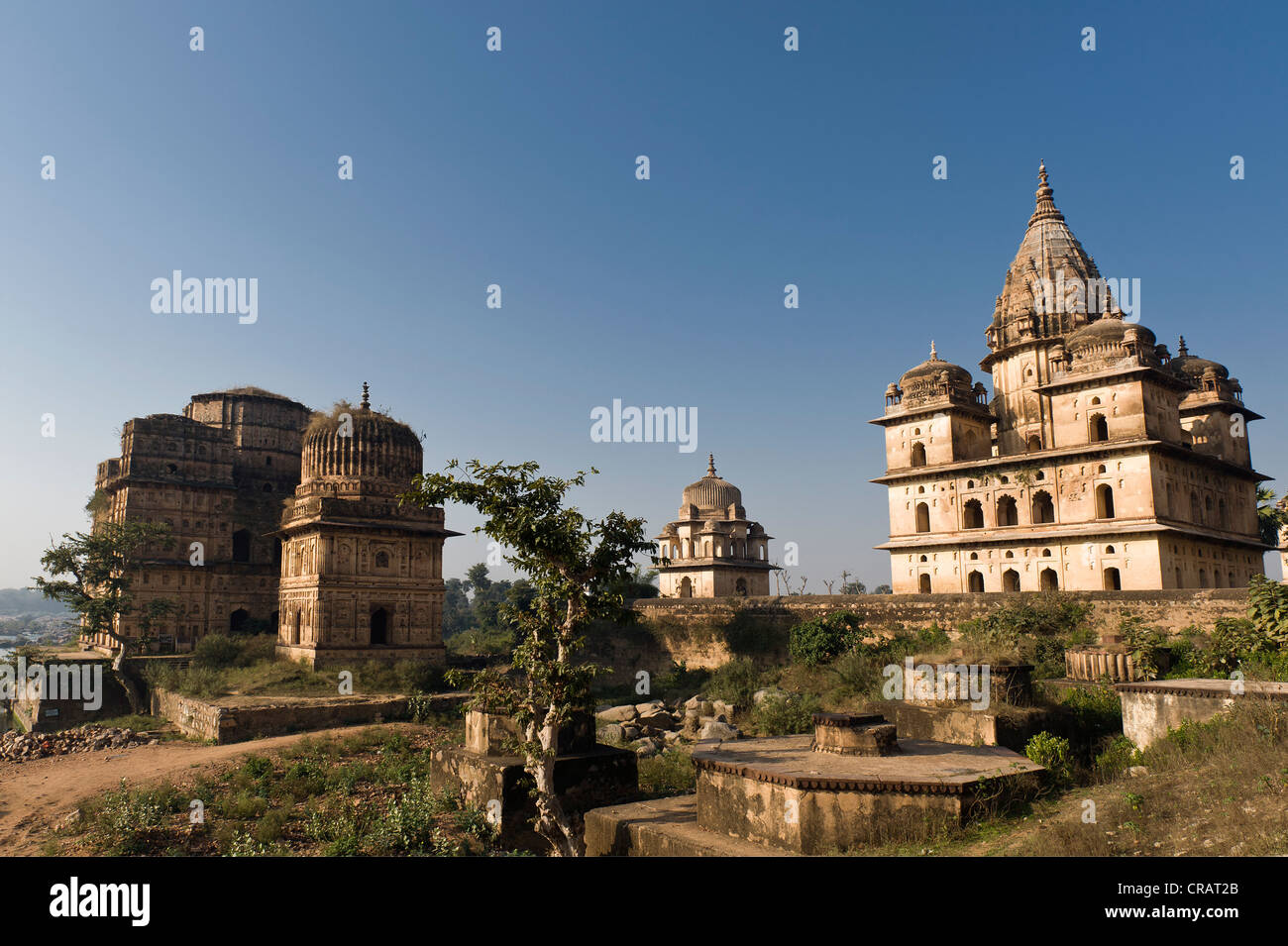 Chhatris grave monuments or cenotaphs, Orchha, Madhya Pradesh, North India, India, Asia - Stock Image