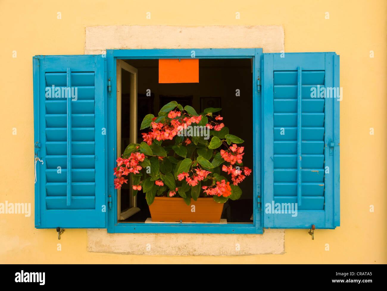 Window with a flower box, Porec, Istria, Croatia, Europe - Stock Image