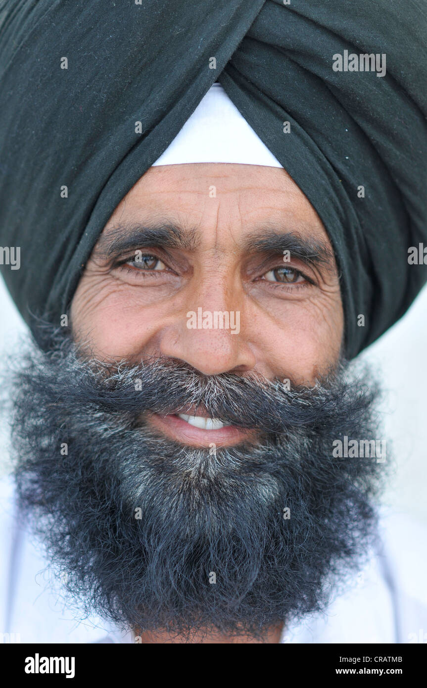 Sikh with a black turban, portrait, Harmandir Sahib or Golden Temple, Amritsar, Punjab, North India, India, Asie - Stock Image