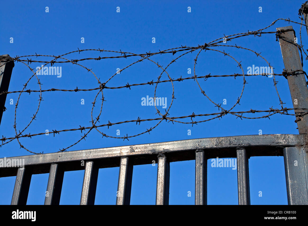 Barb barbed wire security fence fencing gate - Stock Image