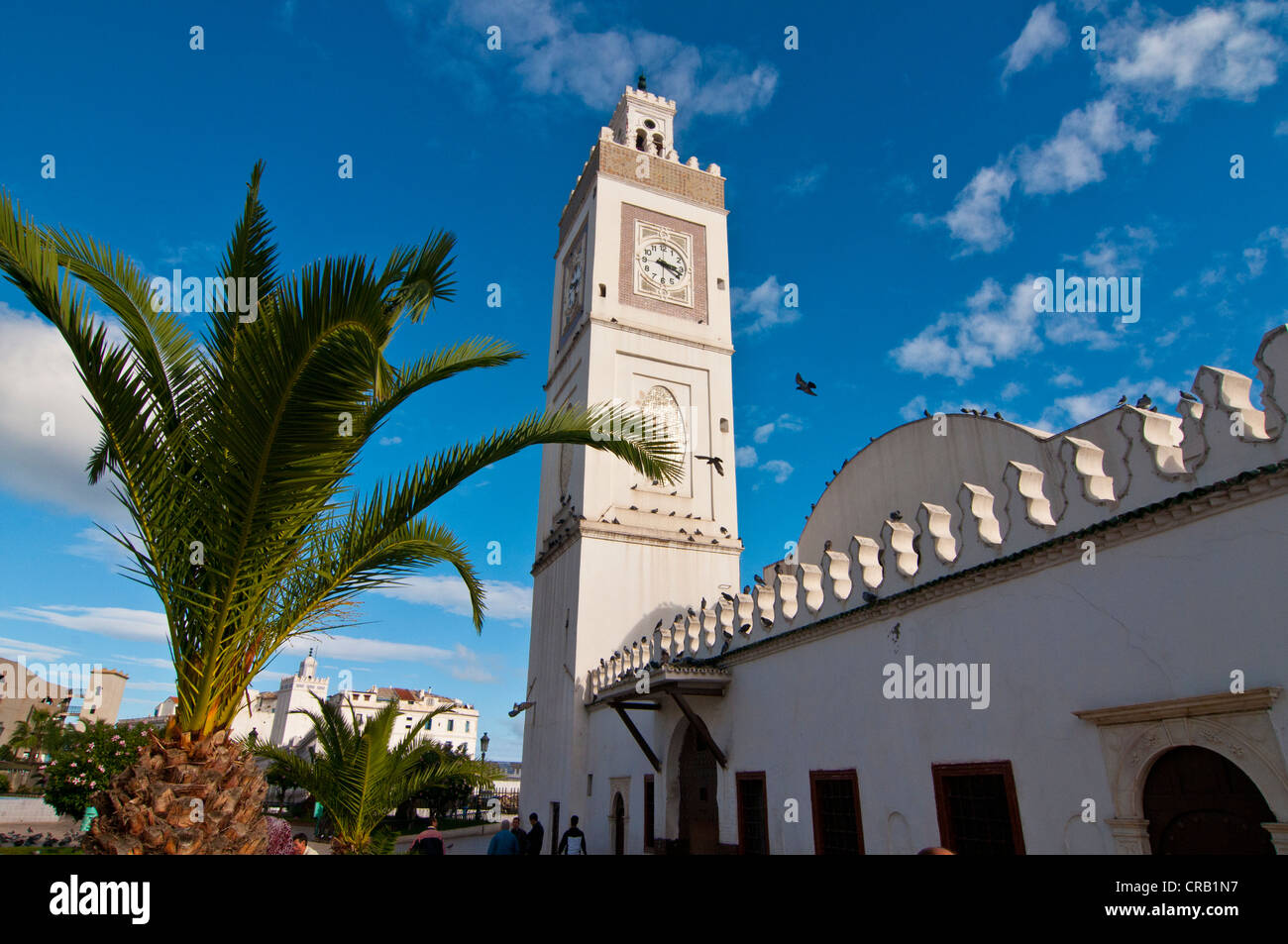 Mosque Jamaa-el-Jedid or Mosque of the Fishermen on Martyrs' Square in Algiers, Algeria, Africa - Stock Image