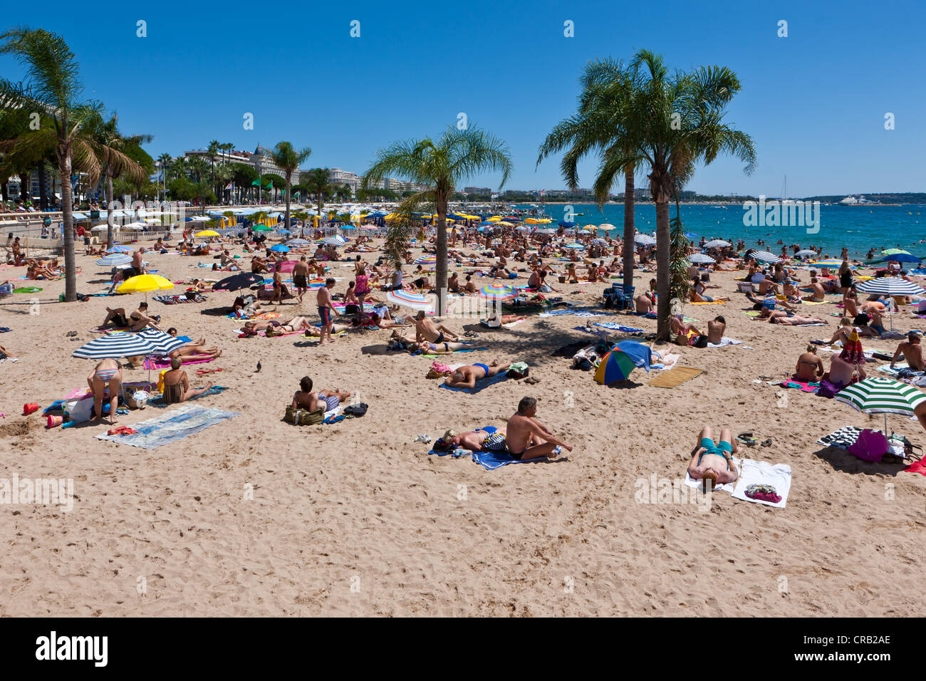 People on the beach of Cannes, at the Croisette, Côte d'Azur, Southern France, Europe, PublicGround - Stock Image