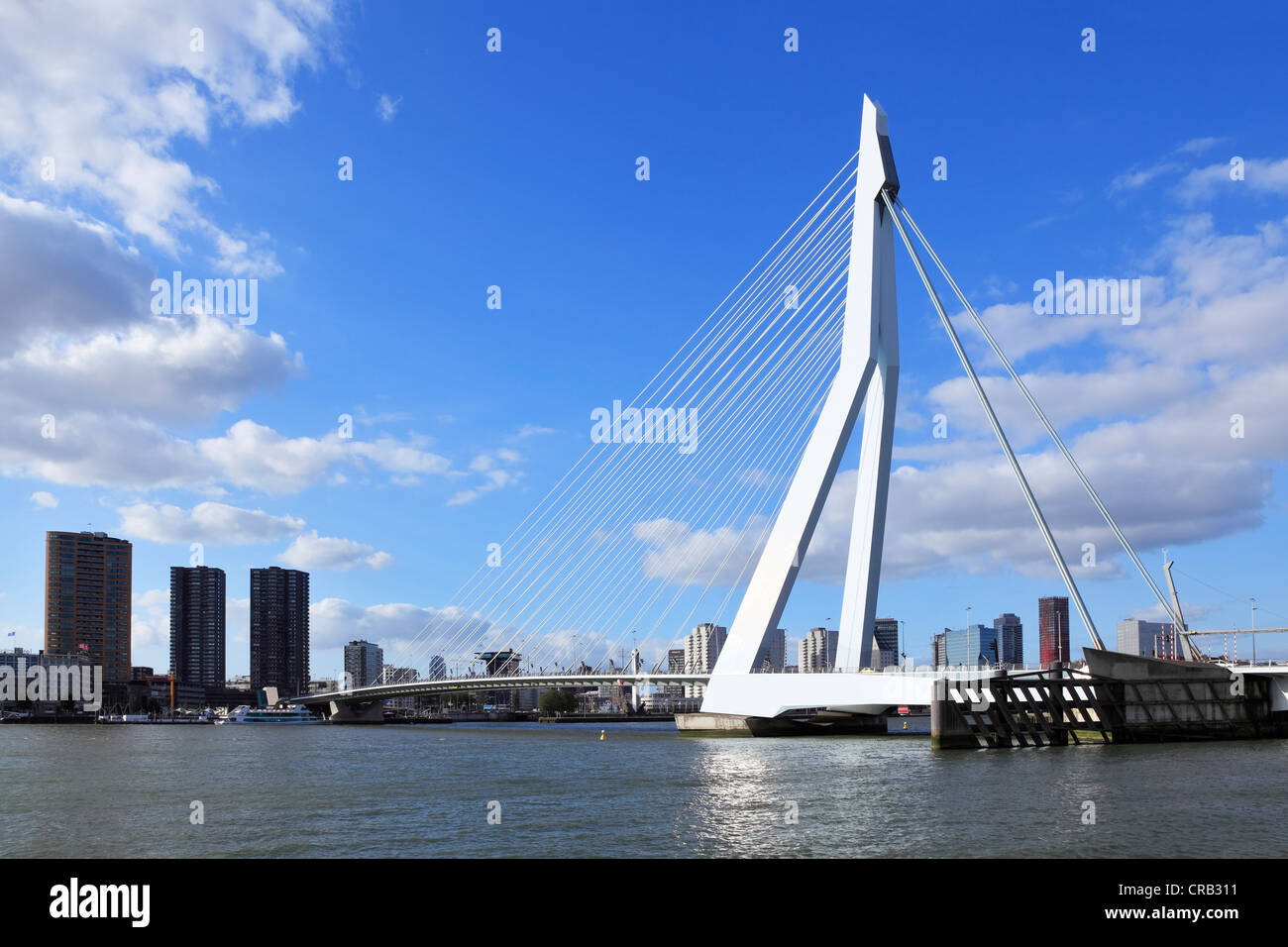 Erasmus Bridge, a cable-stayed bridge, panorama in front of the skyline of Rotterdam, Holland, Netherlands, Europe Stock Photo