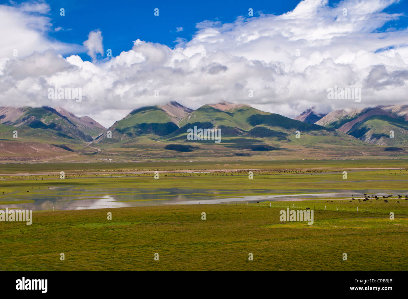 Wide open landscape of Tibet along the railway line from Lhasa to Chengdu, Tibet, Asia Stock Photo