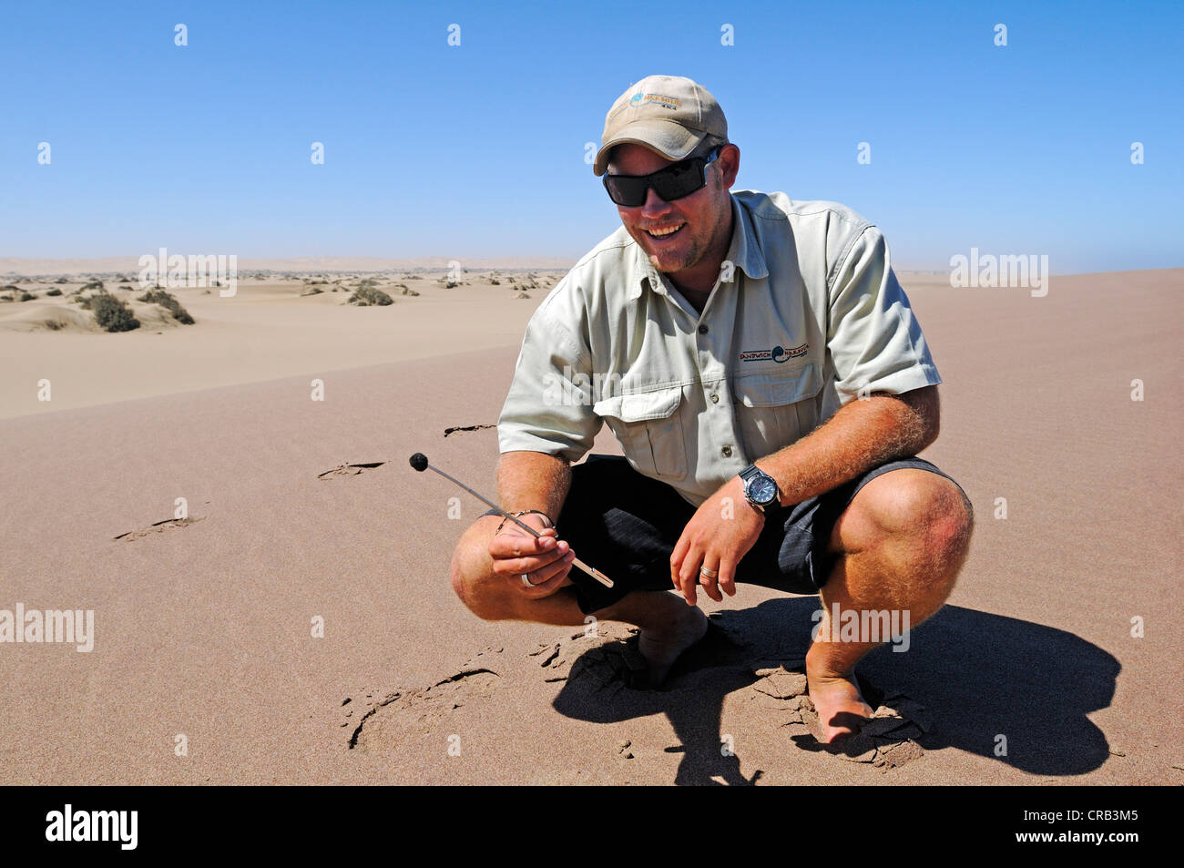 Travel guide demonstrating magnetic sand, magnetite,  National Park, part of the Namibian Skeleton Coast National - Stock Image