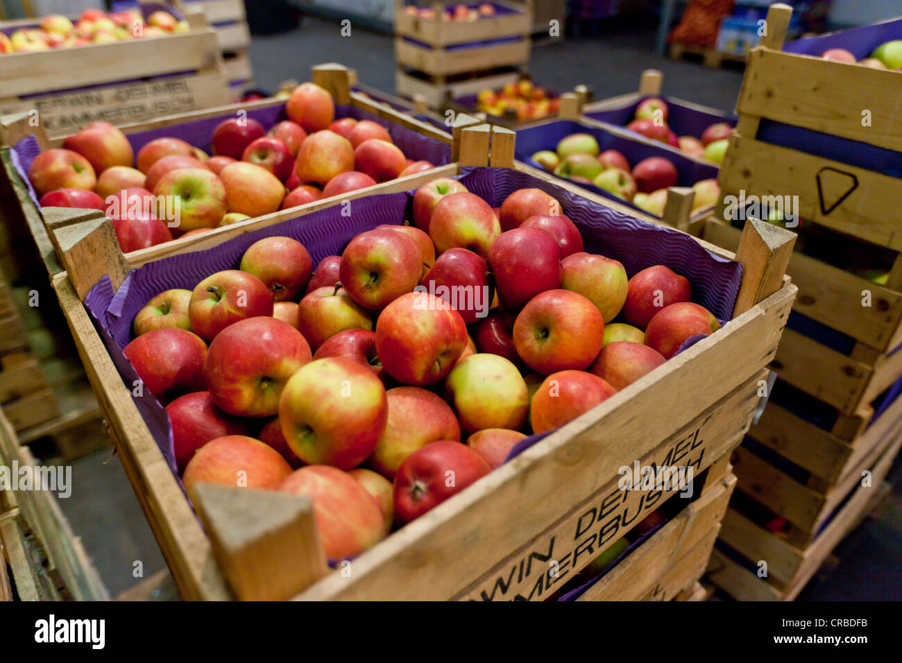 Fresh Apples In Wooden Crates The Wholesale For Produce Fruit And Vegetables Frankfurt Hesse Germany Europe