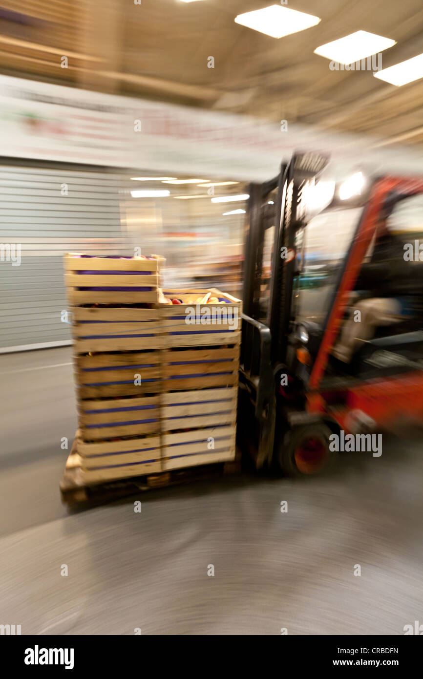 A forklift moves goods in the wholesale for fresh produce, fruits and vegetables, Frankfurt, Hesse, Germany, Europe - Stock Image
