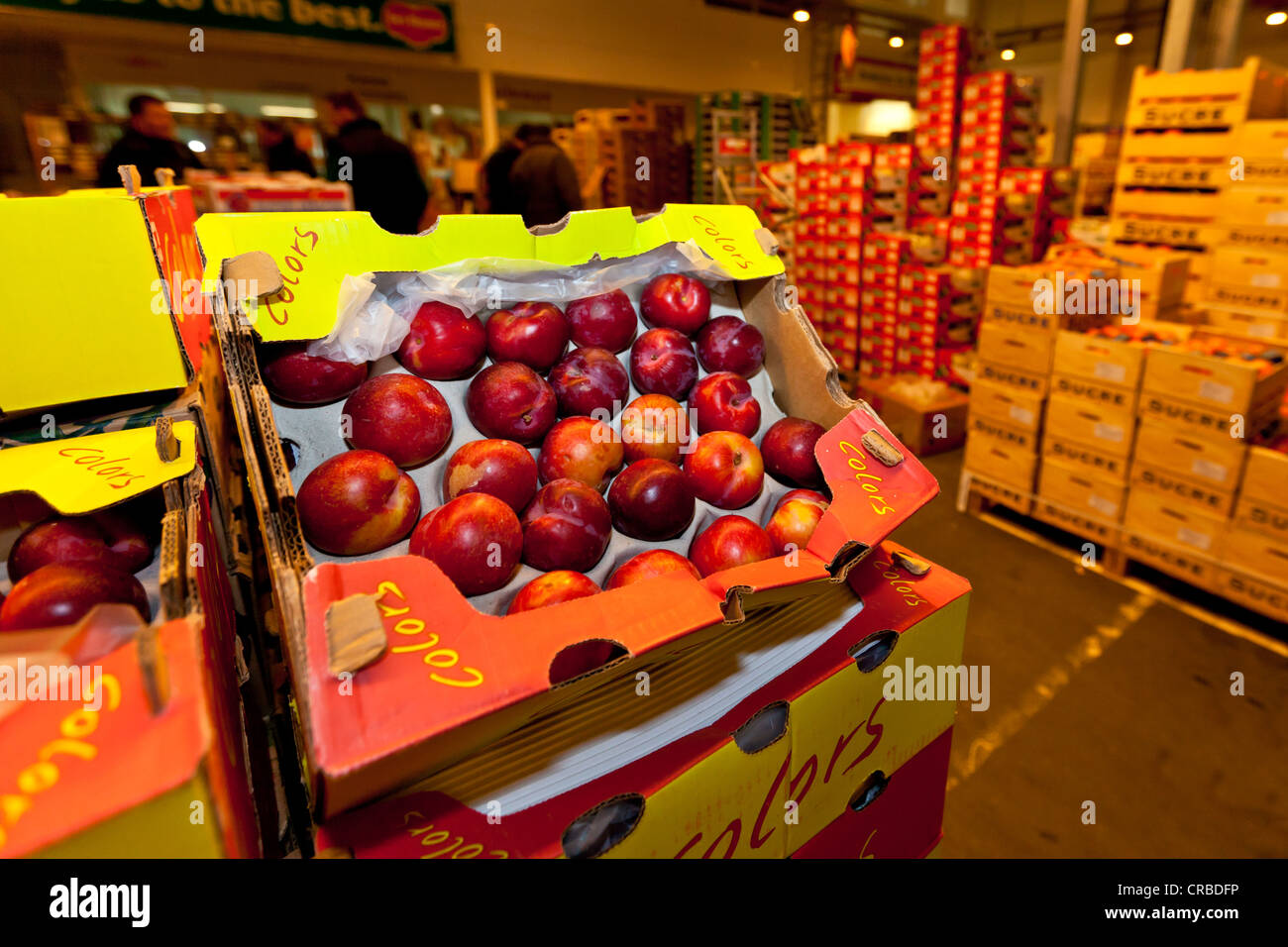 Fresh nectarines in cardboard boxes in the wholesale for