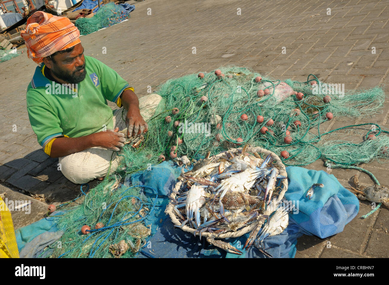 Foreign worker with crabs, Qatar - Stock Image