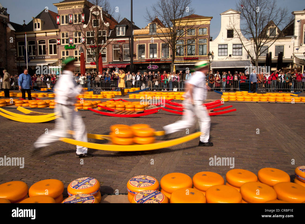 Cheese carriers on the cheese market in Alkmaar, North Holland, Netherlands, Europe - Stock Image