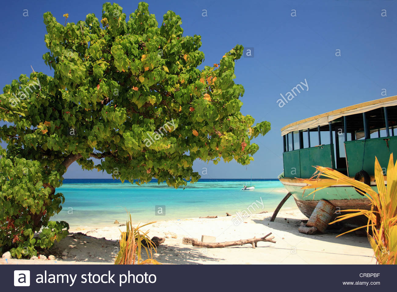 Boat docked on tropical beach - Stock Image