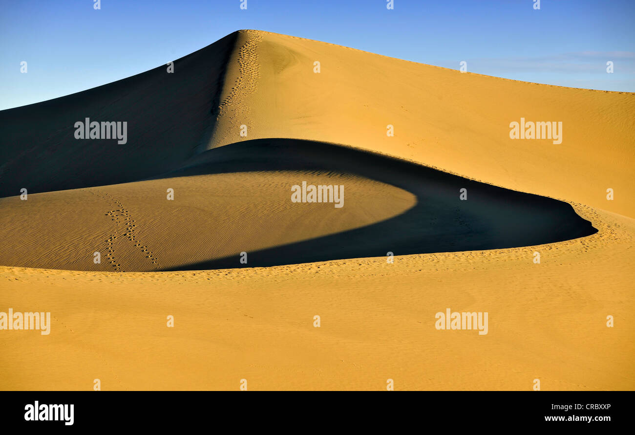 Star Dune, the highest dune of the Mesquite Flat Sand Dunes, known from Star Wars, early morning light, Stovepipe Stock Photo