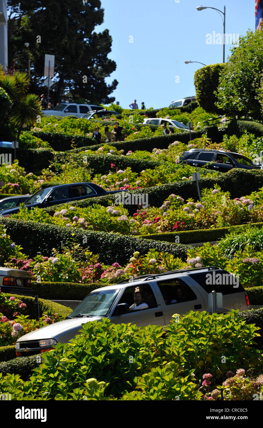 Cars and tourists on Lombard Street, San Francisco, California, United States of America, USA, PublicGround - Stock Image