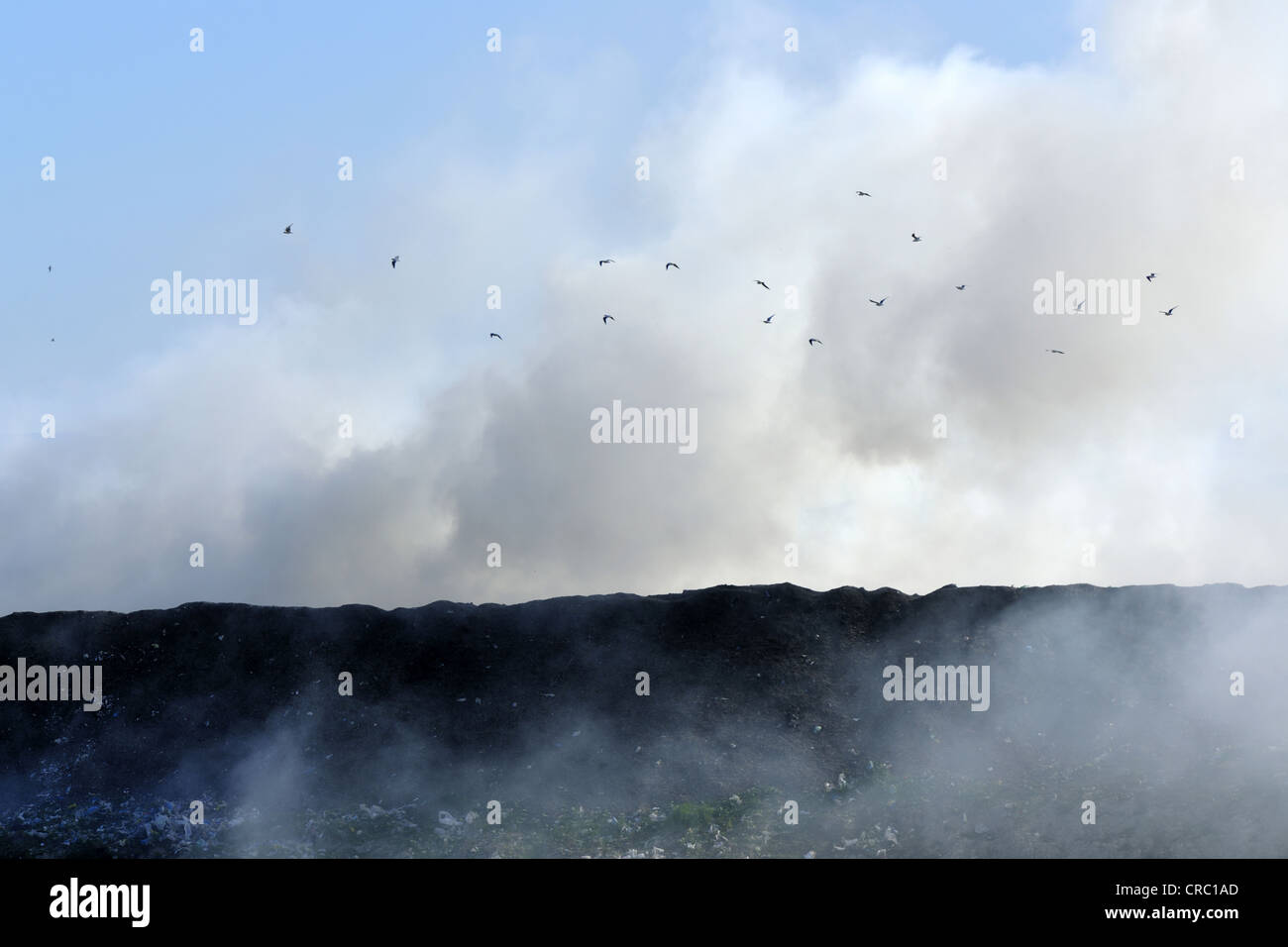 catastrophe, clouds, chemistry, danger, gassing, smoke, - Stock Image