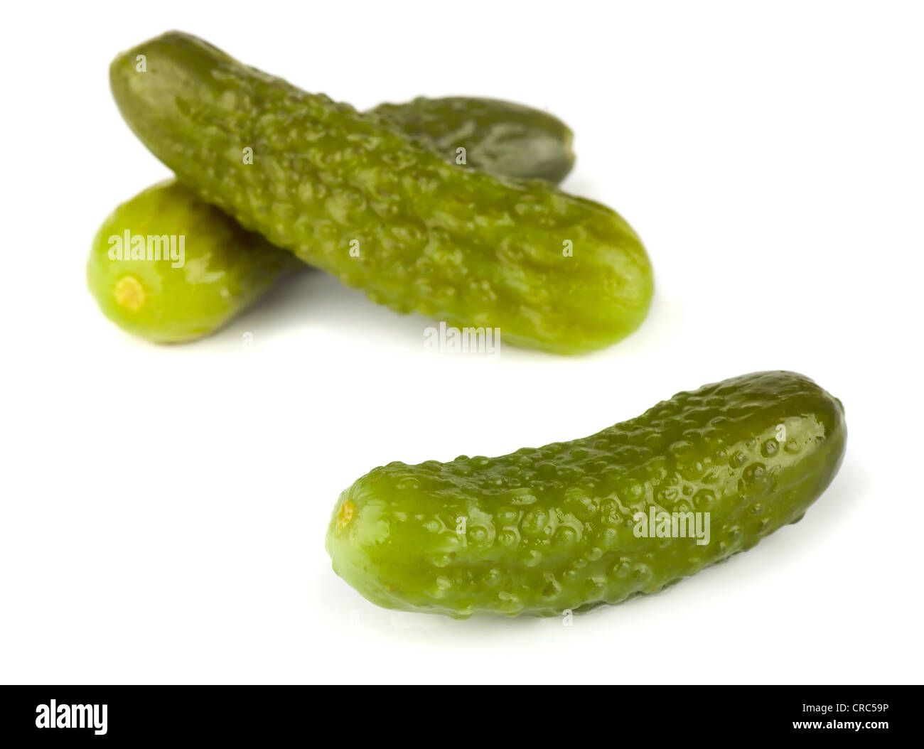 Three pickled gherkins isolated on white background - Stock Image