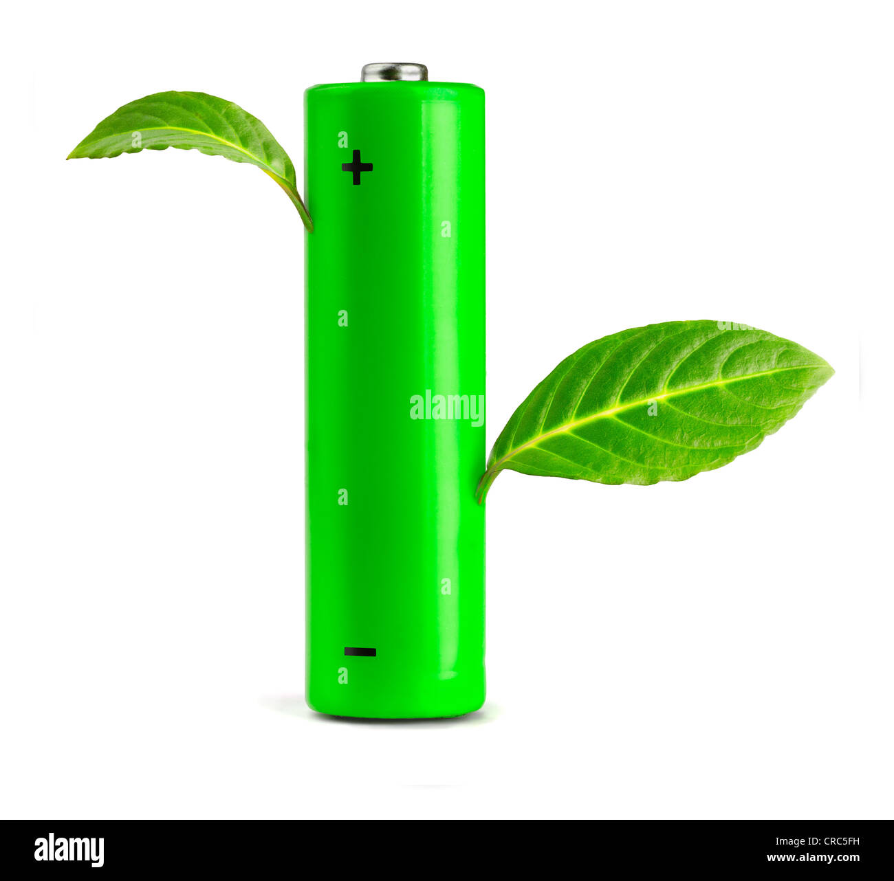 Green leaves growing from the battery. Eco concept - Stock Image
