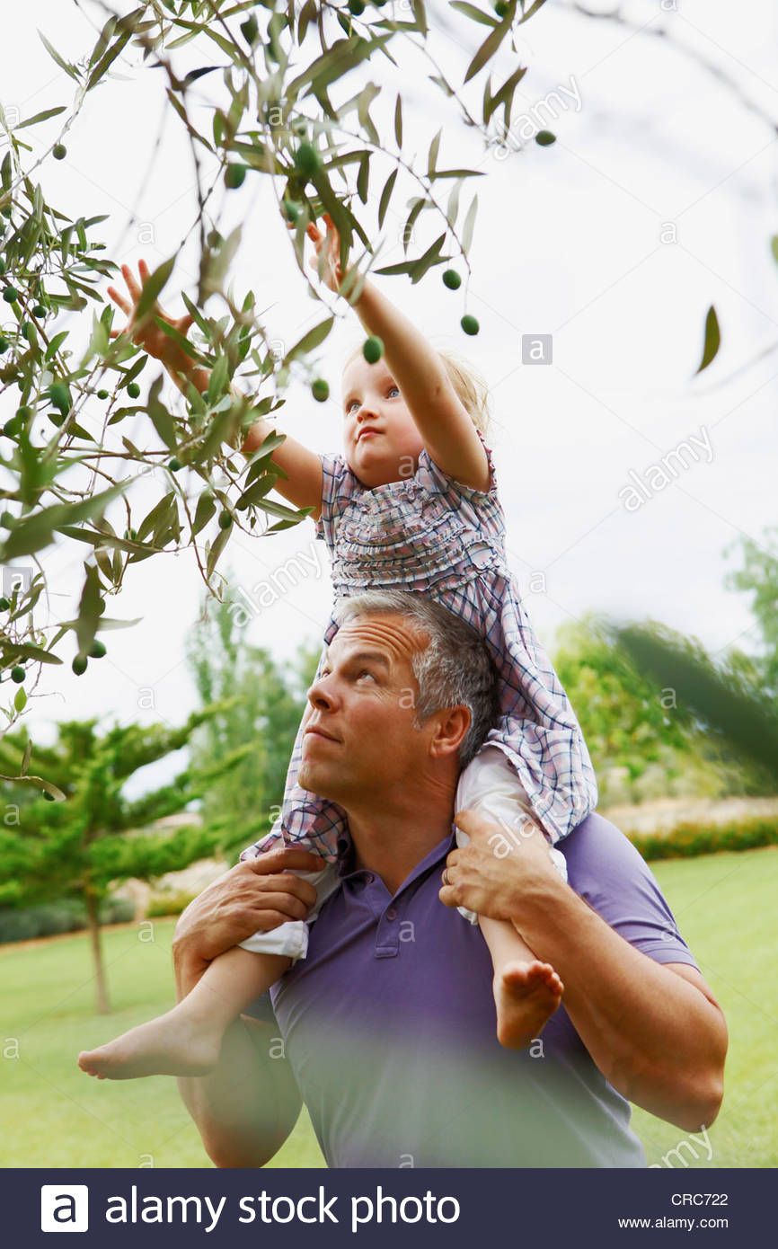 Father helping daughter pick fruit - Stock Image