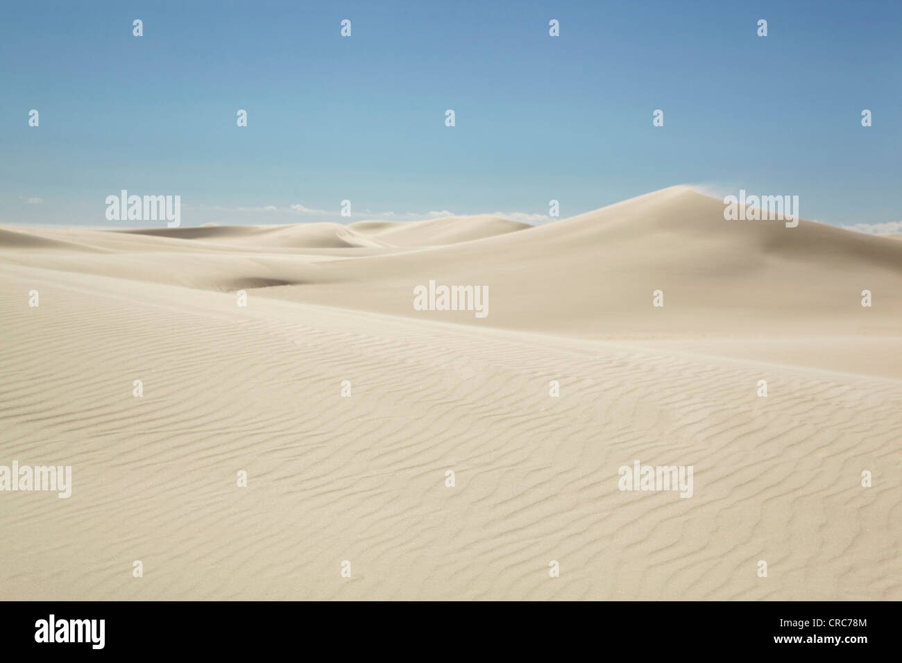 Ripples in sand dunes - Stock Image