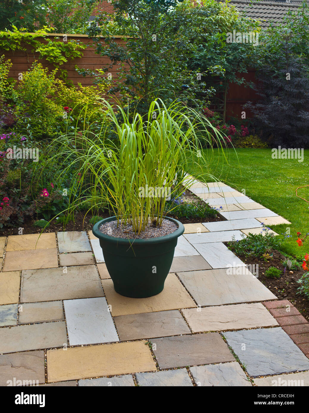 Small garden patio with large pot of ornamental grasses - Stock Image