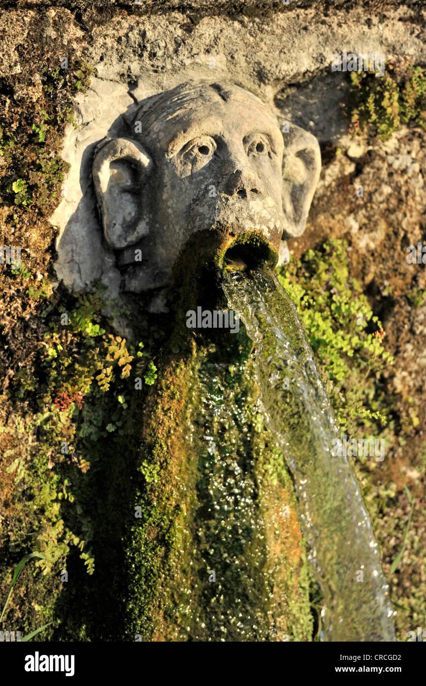 Gargoyle, Viale delle Cento Fontane or Alley of the Hundred Fountains, Garden of the Villa d'Este, UNESCO World Stock Photo