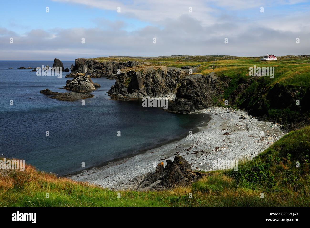 Coastline, Cape Bonavista, Newfoundland, Canada, North America - Stock Image
