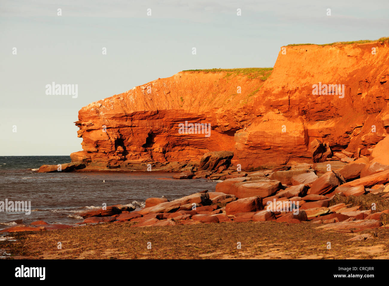 Red sandstone cliffs, typical coastline in Prince Edward Island National Park, Prince Edward Island, Canada Stock Photo