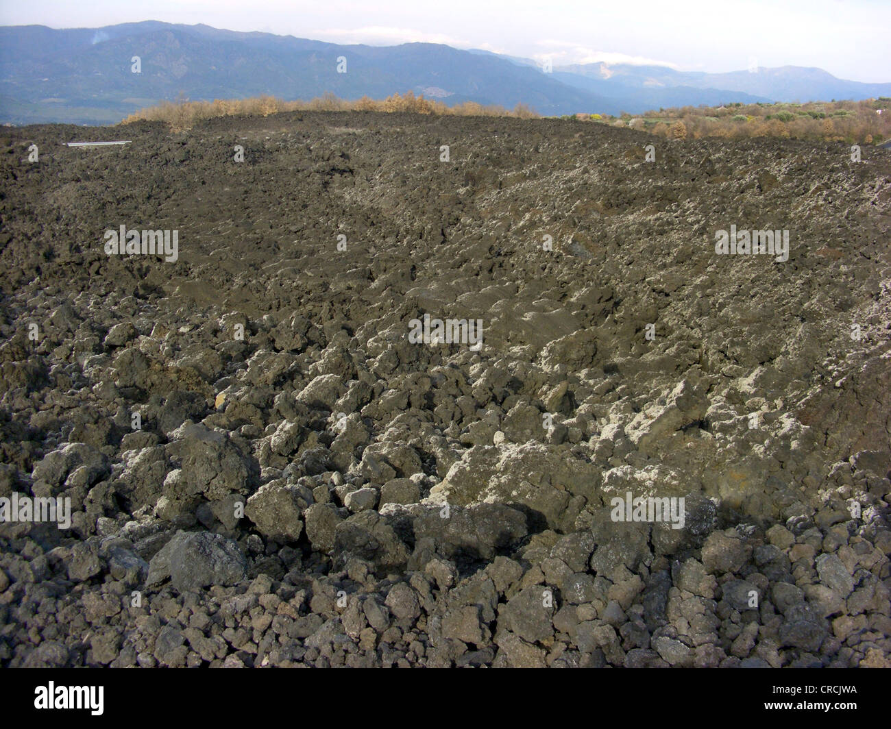 young lava field at the northern slope of Mount Etna, Italy, Sicilia - Stock Image