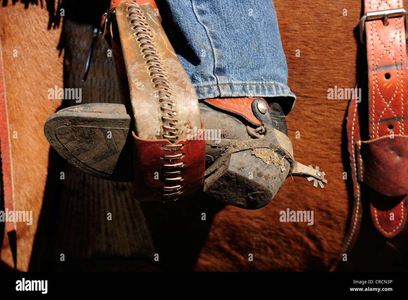 Cowboy boots with spurs in the stirrup - Stock Image