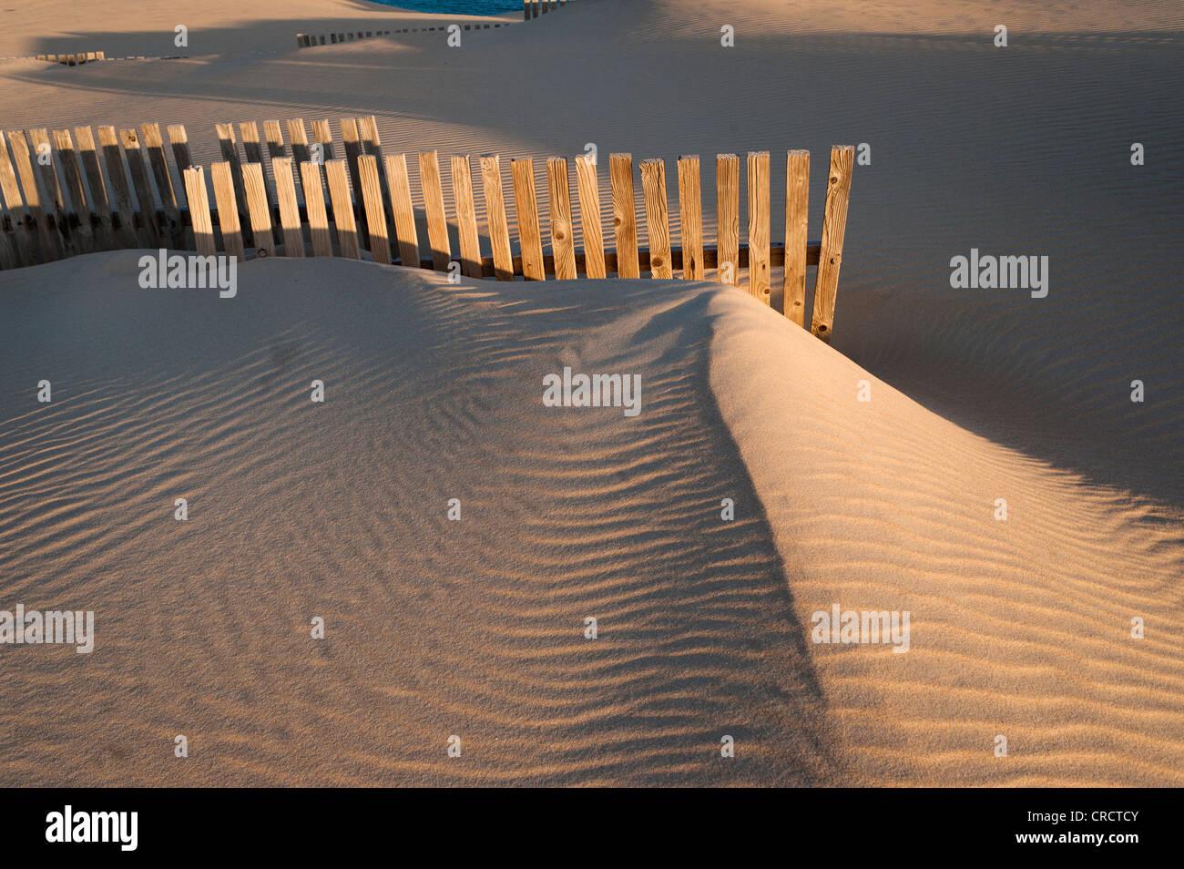 Wooden fence protecting sand dunes from the wind. - Stock Image
