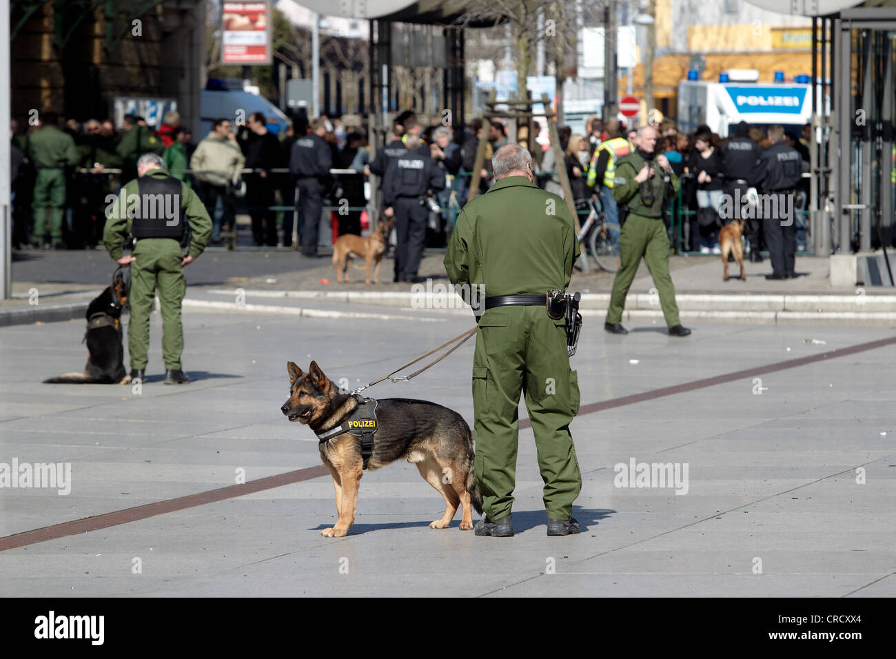 Police officer with police dog at a neo-Nazi demonstration in Koblenz, Rhineland-Palatinate, Germany, Europe - Stock Image