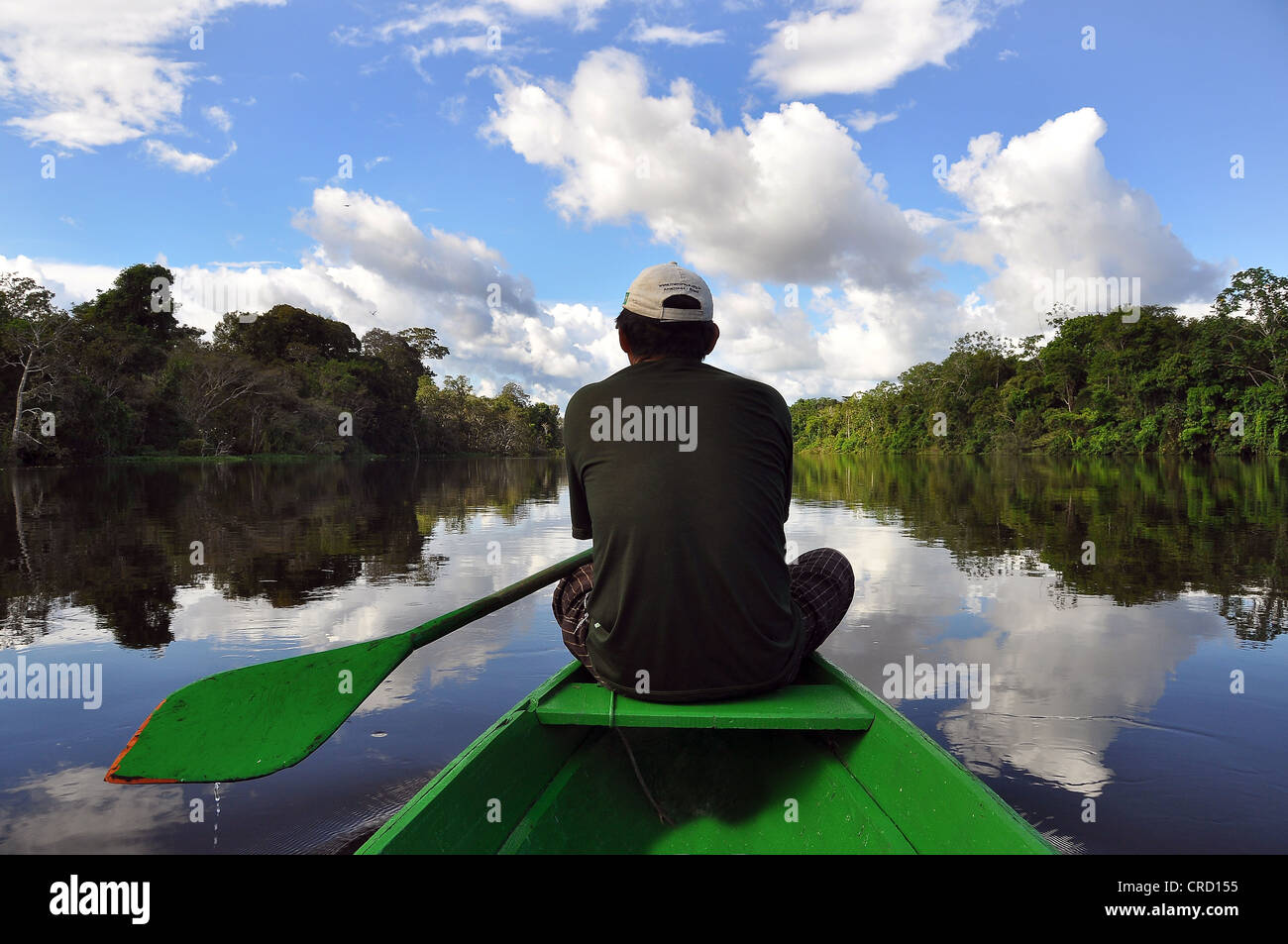 Man travelling by canoe on a tributary of the Amazon, Mamiraua Nature Reserve, Amazon, Brazil, South America - Stock Image