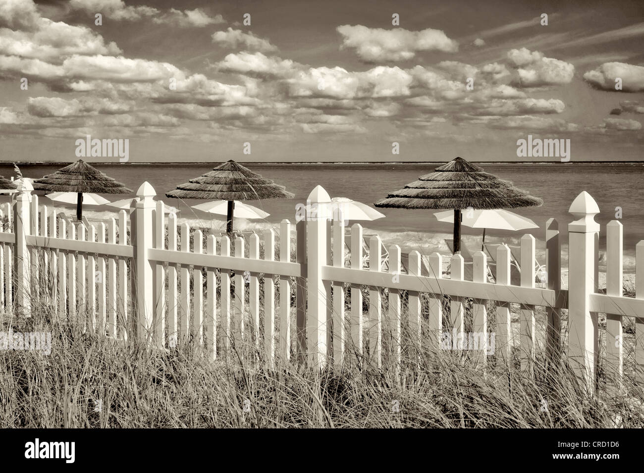 White picket fence and beach umbrellas. Grace Bay. Providenciales. Turks and Caicos - Stock Image
