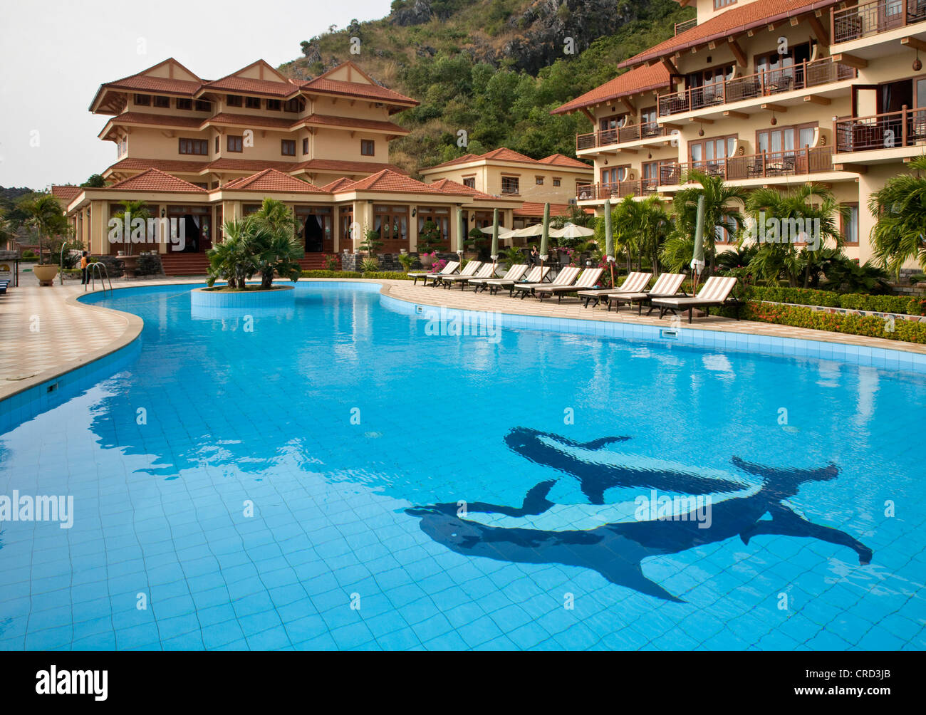 the dolphin tiled swimming pool at the sunrise resort on cat ba stock photo 48846067 alamy