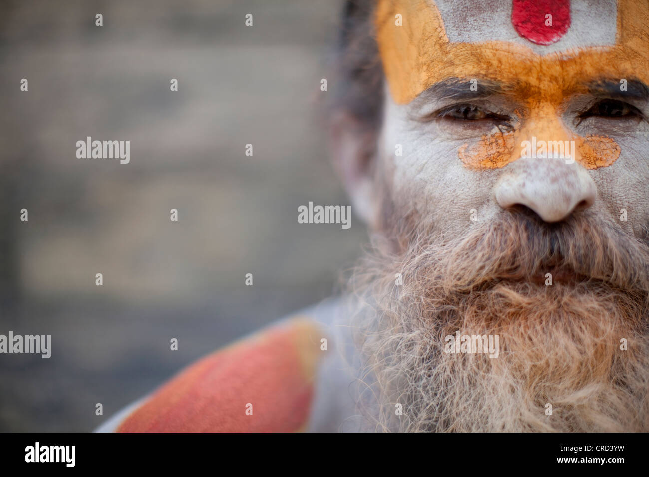 A Hindu priest, a sadhu and esthetic, with body paint poses in a Kathmandu, Nepal temple. - Stock Image