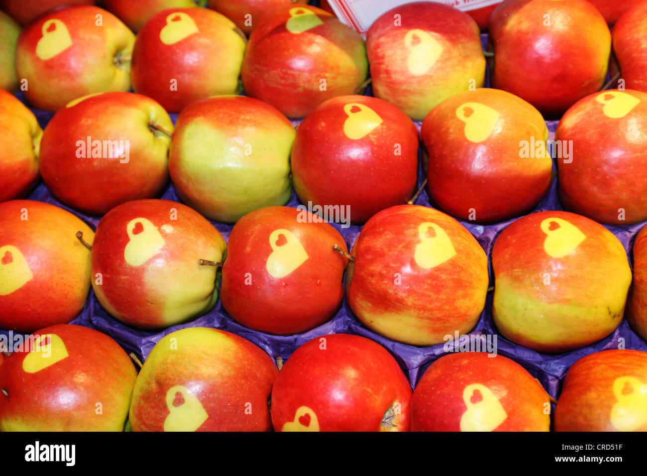 apple (Malus domestica), apples with hearts on display - Stock Image