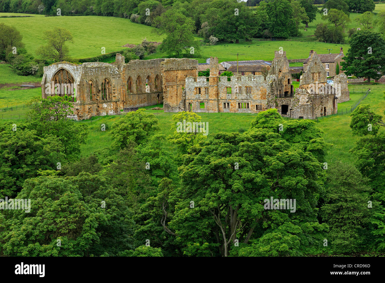Egglestone Abbey, County Durham. 12th century abbey founded by the order of White Canons. - Stock Image