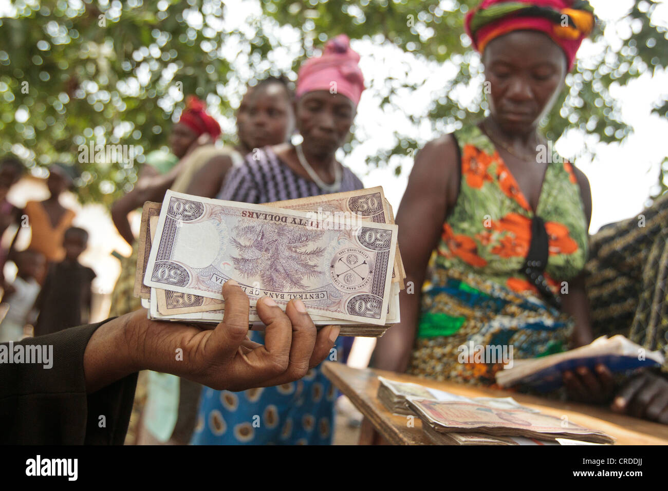 A staff from a local bank holds a handfull of money during a social cash transfer programme distribution - Stock Image