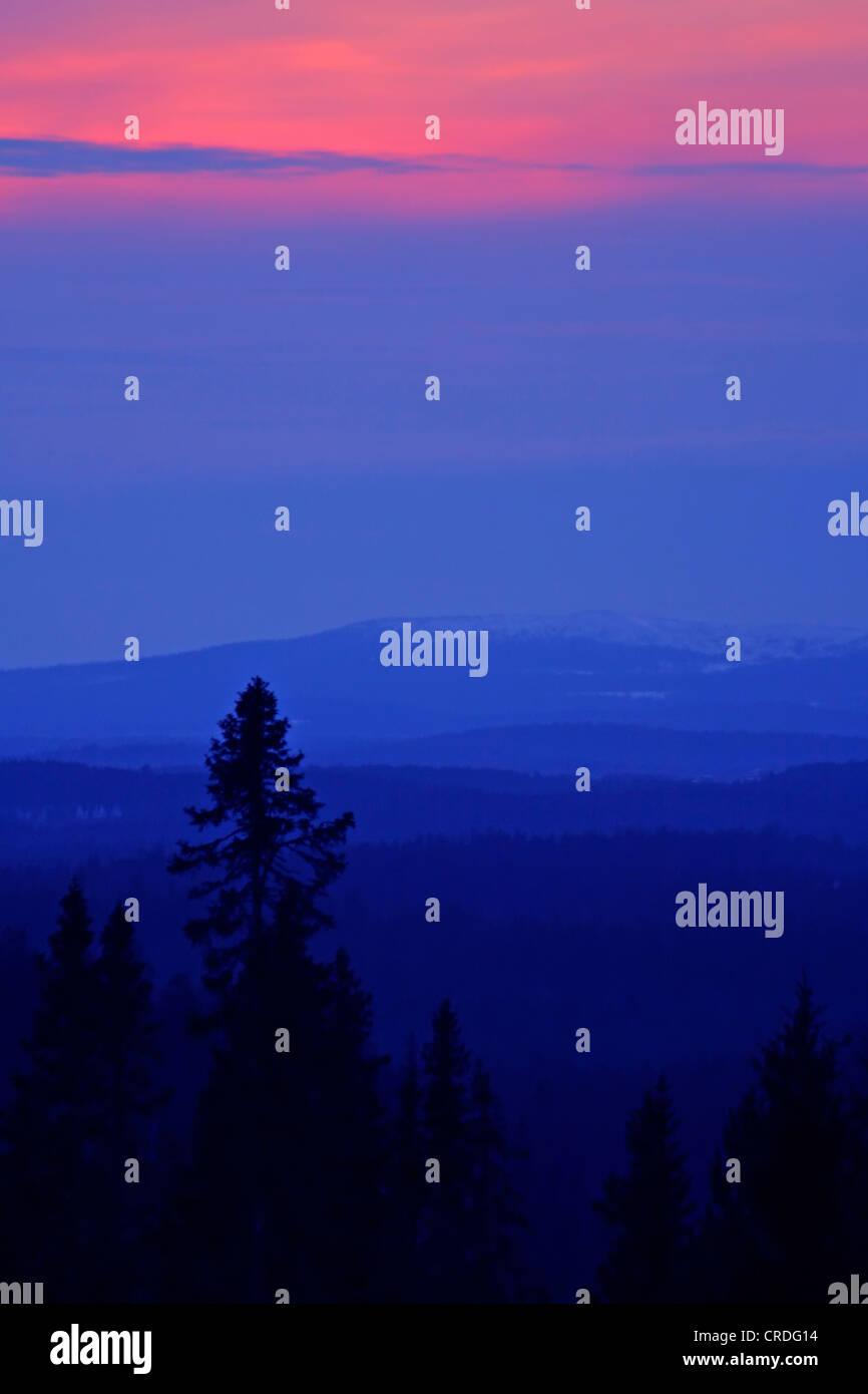 Evening colors. Riisitunturi fjeld and Kuusamo forest, Finland, Kuusamo - Stock Image