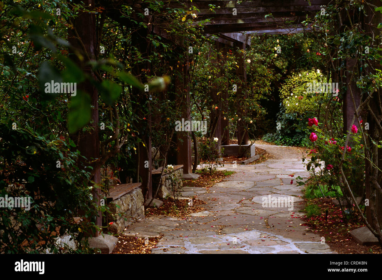 California Berkeley Garden Stock Photos & California Berkeley Garden ...