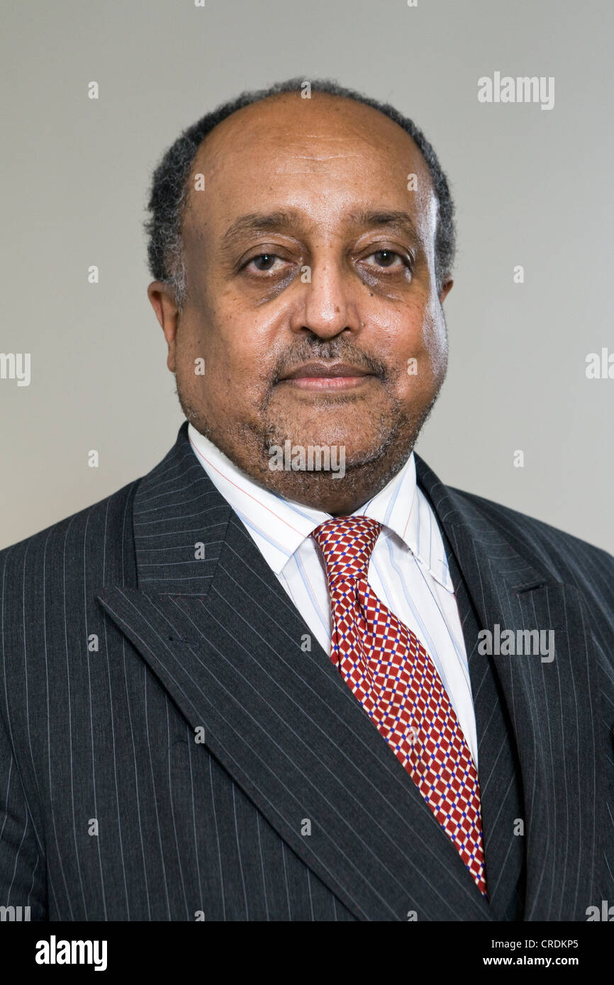 Asfa-Wossen Asserate, Ethiopian-German consultant and author of Manieren, German for Manners, 2003, a grand nephew - Stock Image