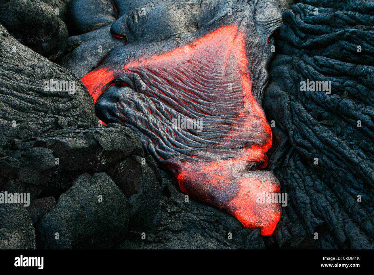 Molten pahoehoe type lava flowing from a crack in the East Rift Zone towards the sea, lava field of the Kilauea - Stock Image