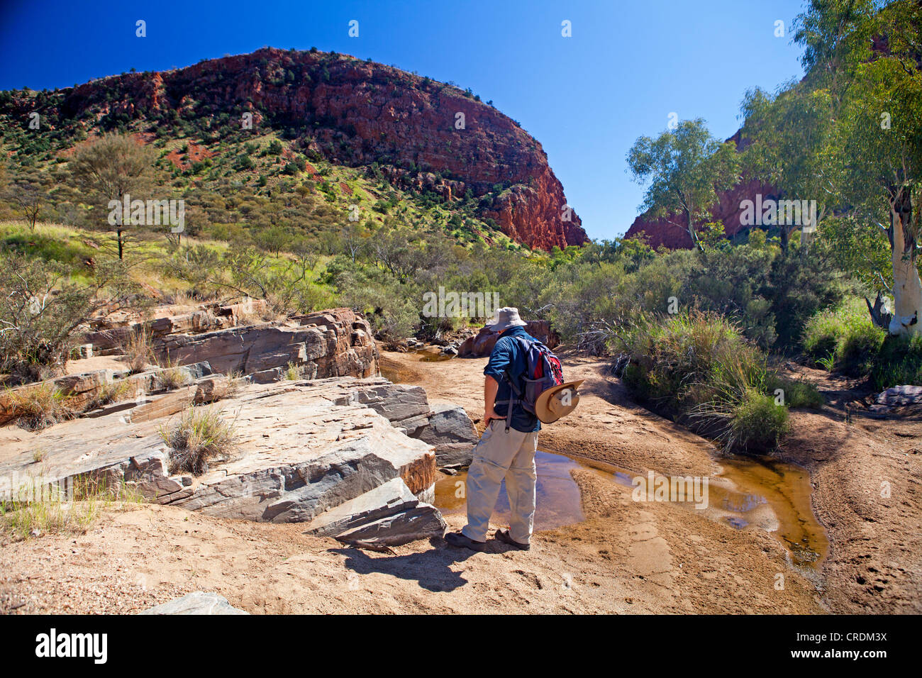 Bushwalker near the entrance to Simpsons Gap in the West MacDonnell Ranges - Stock Image