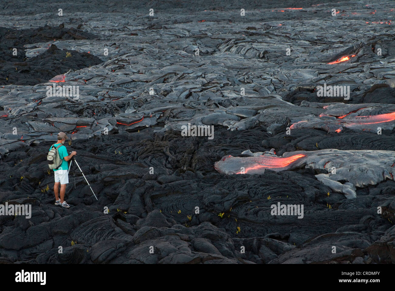 Photographer taking pictures of low viscosity lava, Pāhoehoe lava, flowing from rifts in the East Rift - Stock Image