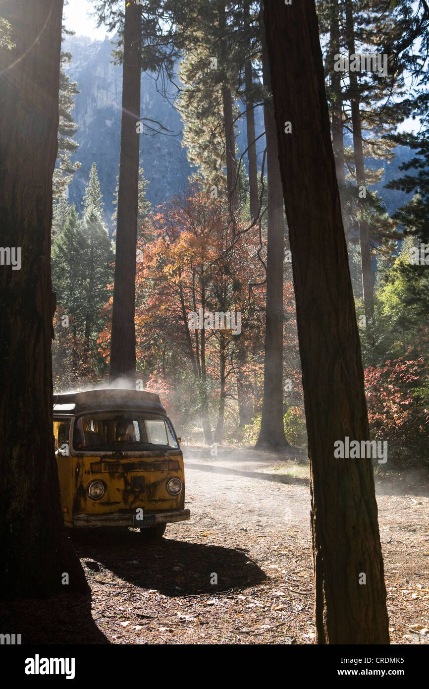 Old VW van between trees in the morning after a rainy day, Yosemite Village, California, USA - Stock Image