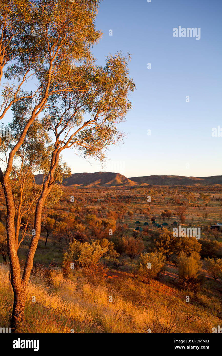 Dawn in the West MacDonnell Ranges - Stock Image