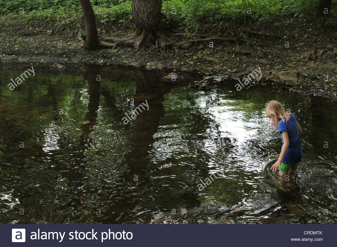 A young girl wading through a creek in Minneapolis. - Stock Image
