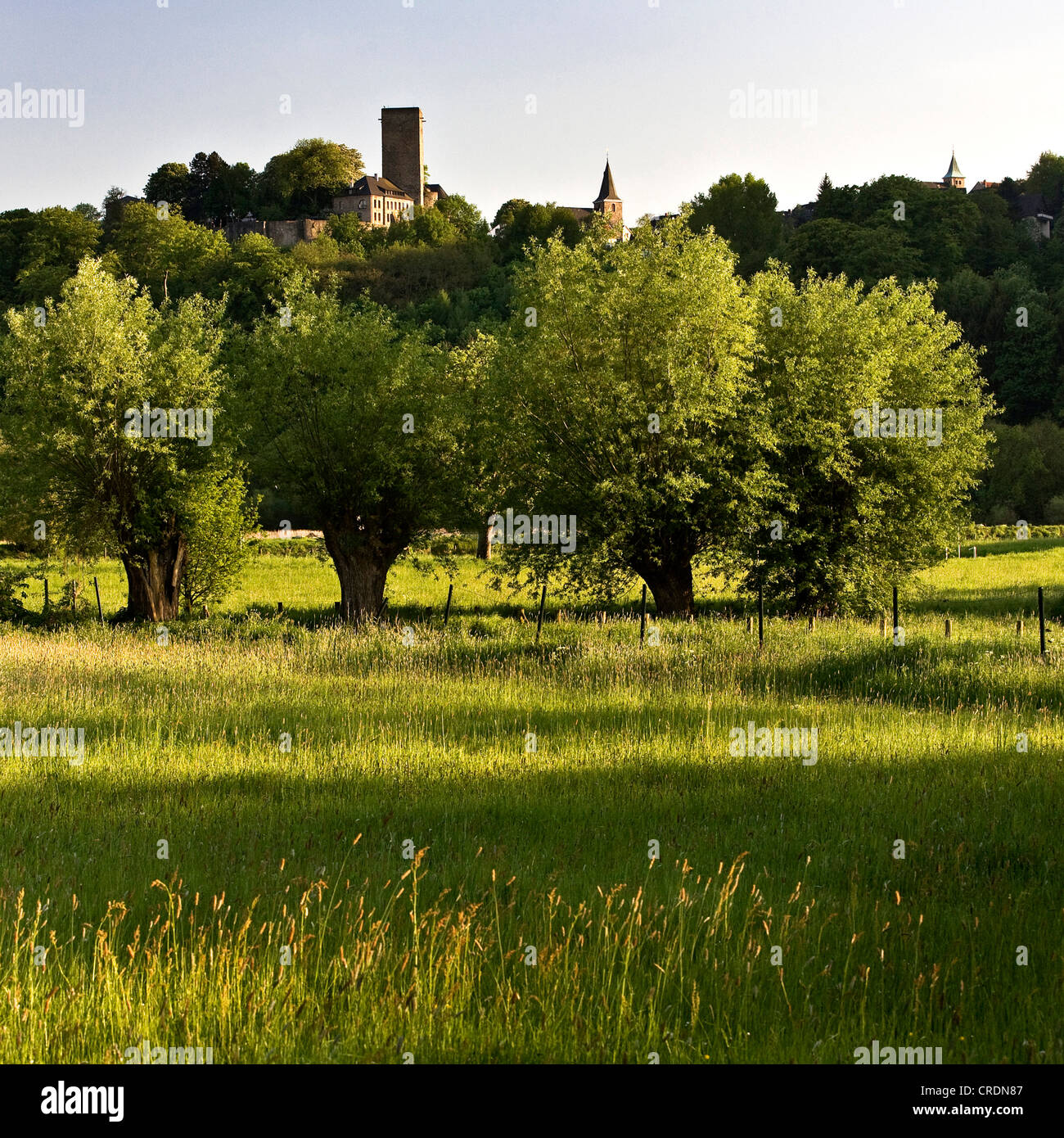 view from Ruhr Valley Cycleway on Hattingen Blankenstein Castle with two chirches, Germany, North Rhine-Westphalia, - Stock Image