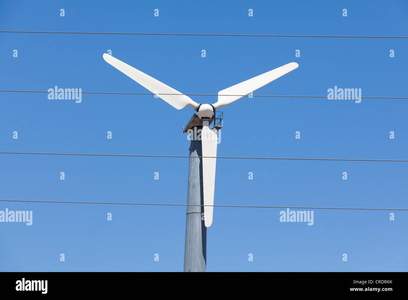 Wind turbine and electric wires - Stock Image