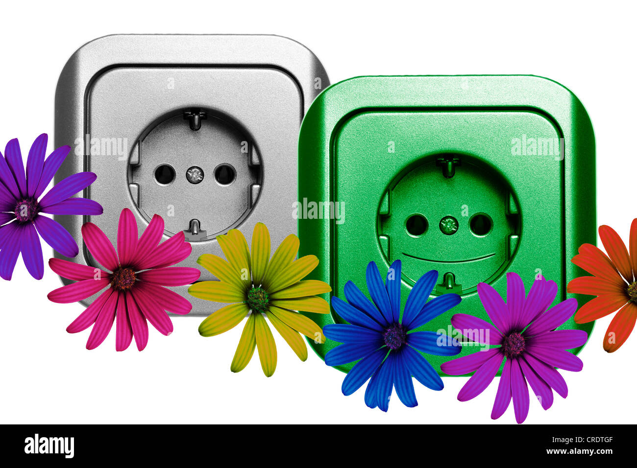 Illustration, sockets and flowers Stock Photo