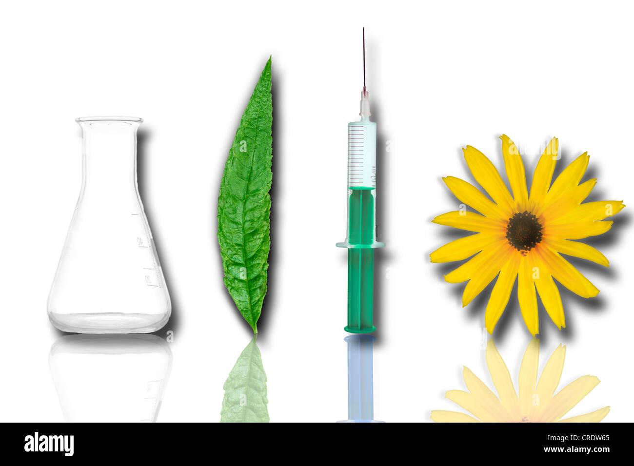 Flask, leaf, hypodermic needle, flower, illustration, Scienceart, Life Sciences - Stock Image